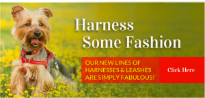 Harnesses for Your Dogs | Maxwell and Molly's Closet Newton NJ