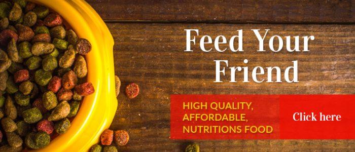 High Quality Pet Nutrition   Maxwell & Mollys   Newton NJ