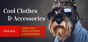 Pet Accessories | Maxwell & Molly | Newton NJ