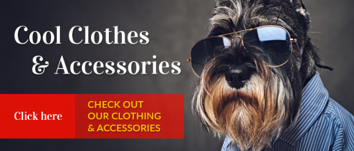 Pet Accessories | Maxwell & Molly | Newton NJ