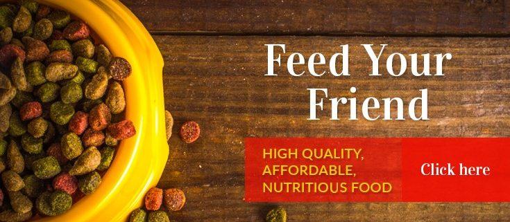 High Quality Pet Nutrition | Maxwell & Mollys | Newton NJ